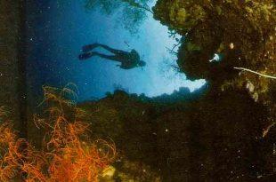Indahnya pesona taman dalam laut Bunaken. Foto: Ilustrasi.