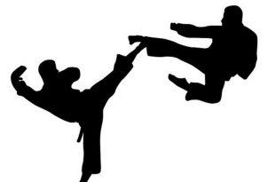 Kartun karate. Foto: Ilustrasi.